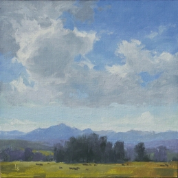 Wolf Creek Watching 8x8 plein air - oil on linen panel SOLD