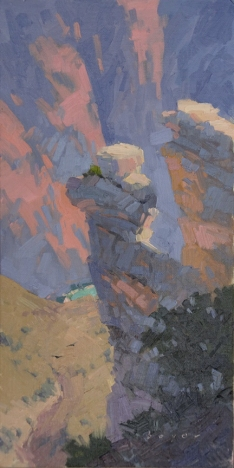 Birds Below - Grand Canyon, AZ 12x6 - oil on linen panel850.00