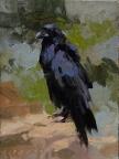 The Black Rogue10x8 plein air oil on linen panel SOLDGrand Canyon Celebration of Art