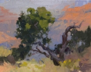 The Point of it All8x10 plein air oil on linen panel 875.00Grand Canyon Celebration of Art